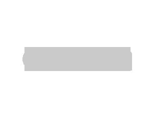 canon logo grey